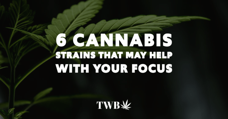 Blog Post Copy 2 1 The Weed Blog - Cannabis News, Culture, Reviews & More